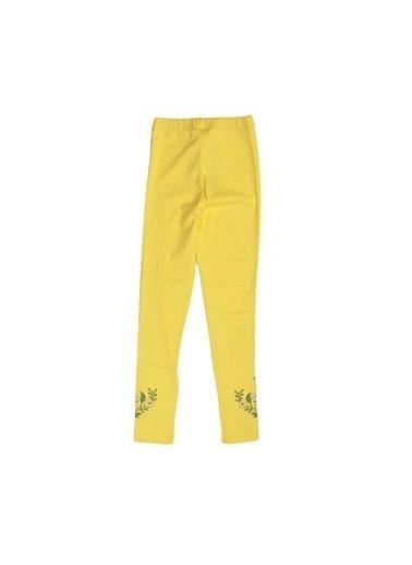 Puledro Tayt Sarı